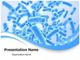 free templates for powerpoint bacteria free bacteria powerpoint template autodiet co
