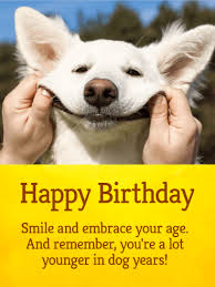 funny birthday cards for everyone birthday u0026 greeting cards by