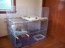 Homemade Rabbit Cage 8 Unique Rabbit Housing Ideas To Inspire You Coops U0026 Cages Coops