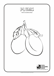 plums coloring page cool coloring pages