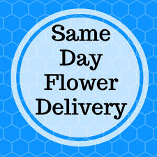 houston flower delivery 100 flower delivery in katy tx houston flowers delivery