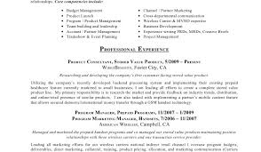 Marketing Manager Resume Sample Pdf Achilles Homework Page Tv Resume Examples Example Thesis