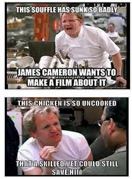 Chef Gordon Ramsay Memes - chef gordon ramsay tried girl scout cookies and hilarity ensued