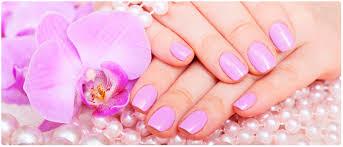 price list nail salon seekonk nail salon 02771 perfect nails