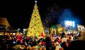 outdoor christmas tree lights large bulbs beautiful design ideas outdoor large christmas lights for trees
