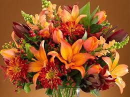 thanksgiving flowers fall flowers guide proflowers