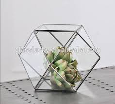 hanging geometric glass terrarium glass globe hanging terrarium