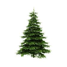 christmas trees artificial fresh or living modernize