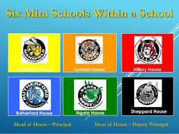 high high school house elf14 peggy burrows rangiora high school