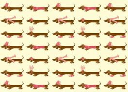 decorative wrapping paper dachshund designer luxury christmas decorative gift wrap
