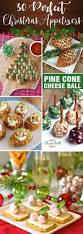 best 25 appetizers for christmas party ideas on pinterest