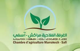 chambre de l agriculture 44 chambre agriculture marrakech safi الخبر24 جريدة مغربية