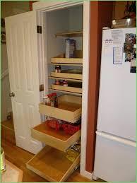 Kitchen Cabinet Inserts Storage Kitchen Cabinet Inserts Storage Chic Kitchen Cupboard Shelf