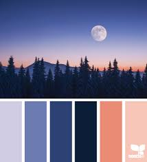 winter color schemes home page winter seeds and color inspiration