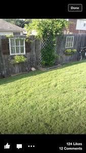Types Of Garden Fences - the 25 best types of fences ideas on pinterest backyard fences