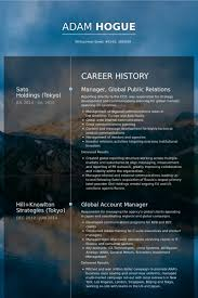 Website Resume Examples by Public Relations Resume Samples Visualcv Resume Samples Database