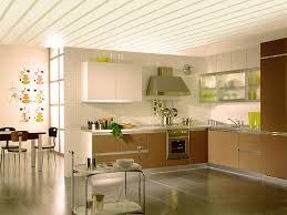 pvc wall panel ceiling designs kitchen u2014 l shaped and ceiling