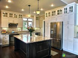 buy kitchen cabinets direct bathroom cabinets to go large size of white paint cabinets direct