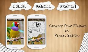 color pencil sketch effect app ranking and store data app annie