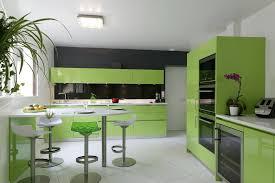 petites mouches cuisine petites mouches cuisine maison design edfos com
