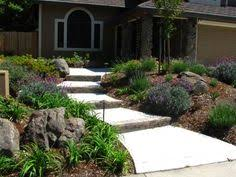 Drought Tolerant Backyard Ideas Modern Drought Tolerant Garden I Would Almost Be Worth Living In