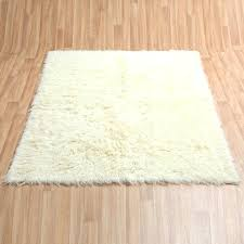 Qvc Area Rugs Qvc Area Rugs Gy Qvc Large Area Rugs Thelittlelittle
