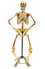 posable skeleton posable skeleton l by zia priven a different type of
