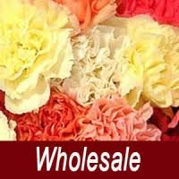Wholesale Carnations Weddings Wholesale Floral