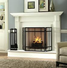 decorative fireplace screens lowes and doors glass gas apstyle me