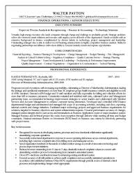 Best Resume Format Executive by Sample Resume Executive Summary Resume Samples Samples Finance