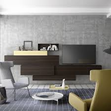 Modular Wall Units Living Room Awe Inspiring Wall Storage Unit Ideas For Living