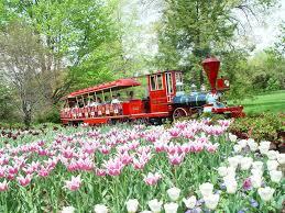 Botanical Garden Cincinnati Rides 4 D Experiences The Cincinnati Zoo Botanical Garden