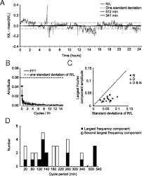 laterality and symmetry in rat olfactory behavior and in