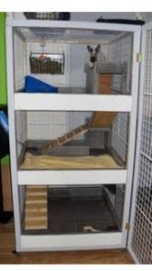 Rabbit Hutch Ramp Stairs Ramps For Multilevel Hutch Binkybunny Com House Rabbit