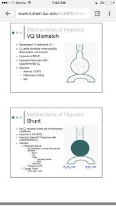 Visual Anatomy And Physiology Pdf As 10 Melhores Ideias De Anestesia Pdf No Pinterest Enfermeria