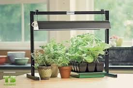 where to buy plant lights grow lights