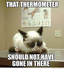 Meme Generator Cat - science cat meme generator cat best of the funny meme