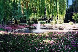 Bay Area Wedding Venues Download Gardens In Bay Area Solidaria Garden