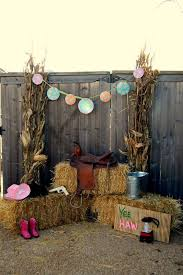 Smart Idea Country Party Decorations Cowgirl Western Birthday