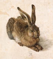 vintage rabbit animal woodland rabbit hare durer vintage printable