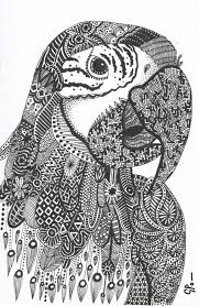 10 best parrots images on pinterest drawings coloring books and