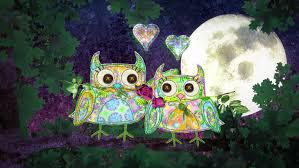 love themes video owls in love for valentines day weddings romance themes two owls