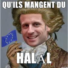 Meme Francais - aristocrat macron 2017 french presidential election know your meme