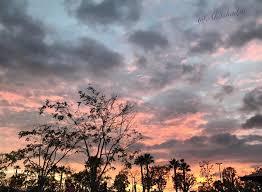 spirit halloween marina del rey pamela johnson cruiseinvictus twitter