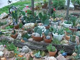 Indoor Rock Garden Ideas Cactus Garden Designs Cactus Rock Garden Design Cactus Rock Garden