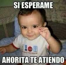 Memes Carmen - unique 24 memes de carmelita wallpaper site wallpaper site