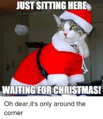 Just Sitting Here Meme - just sitting here waiting for christmas oh dearit s only around