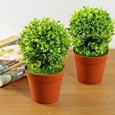 topiary trees best interior design ideas