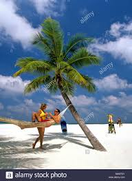 palm tree young couple with drinks hammock on the beach