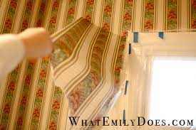 the best way to remove wallpaper what emily does